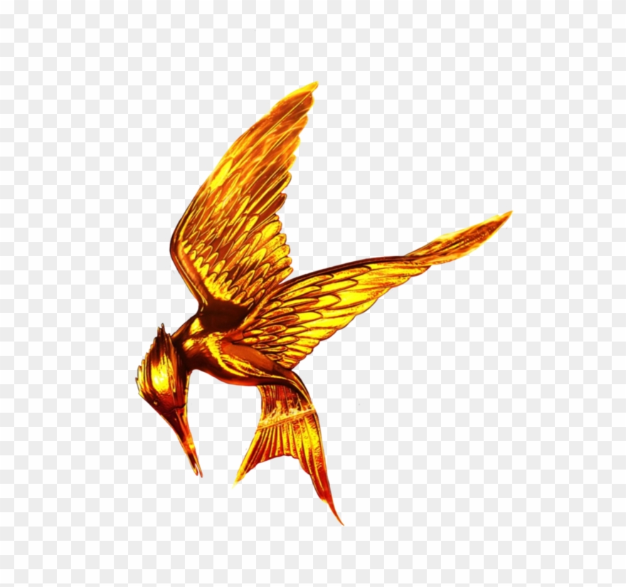 The Hunger Games Png Free Download Clipart (#2618003.