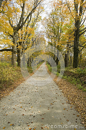 Backroads In Autumn On Mohawk Trail In Western Massachusetts, New.