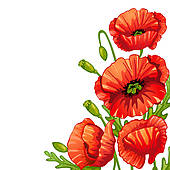 Poppies Clip Art and Stock Illustrations. 2,701 poppies EPS.