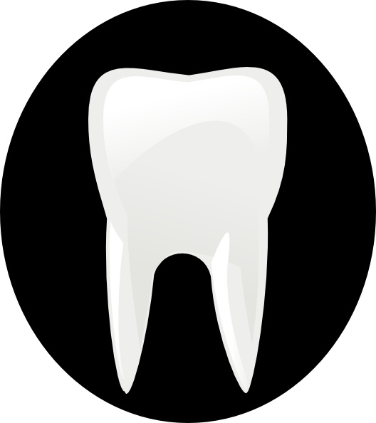 Tooth Molar clip art Free vector in Open office drawing svg ( .svg.
