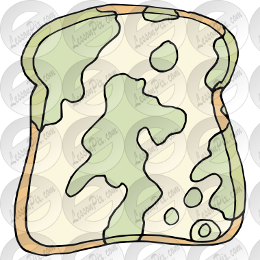 Moldy Bread Picture for Classroom / Therapy Use.