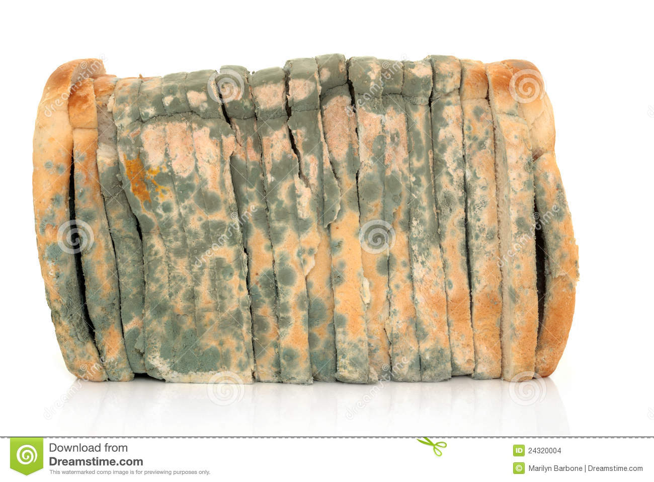 Mouldy Sliced Bread Stock Images.