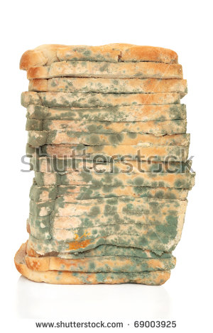 Moldy Bread Stock Images, Royalty.