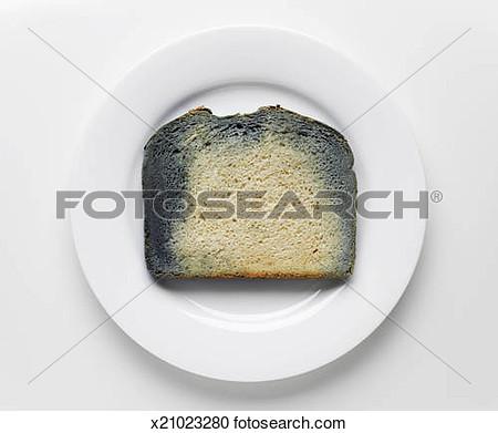 Moldy Bread Clipart Slice.