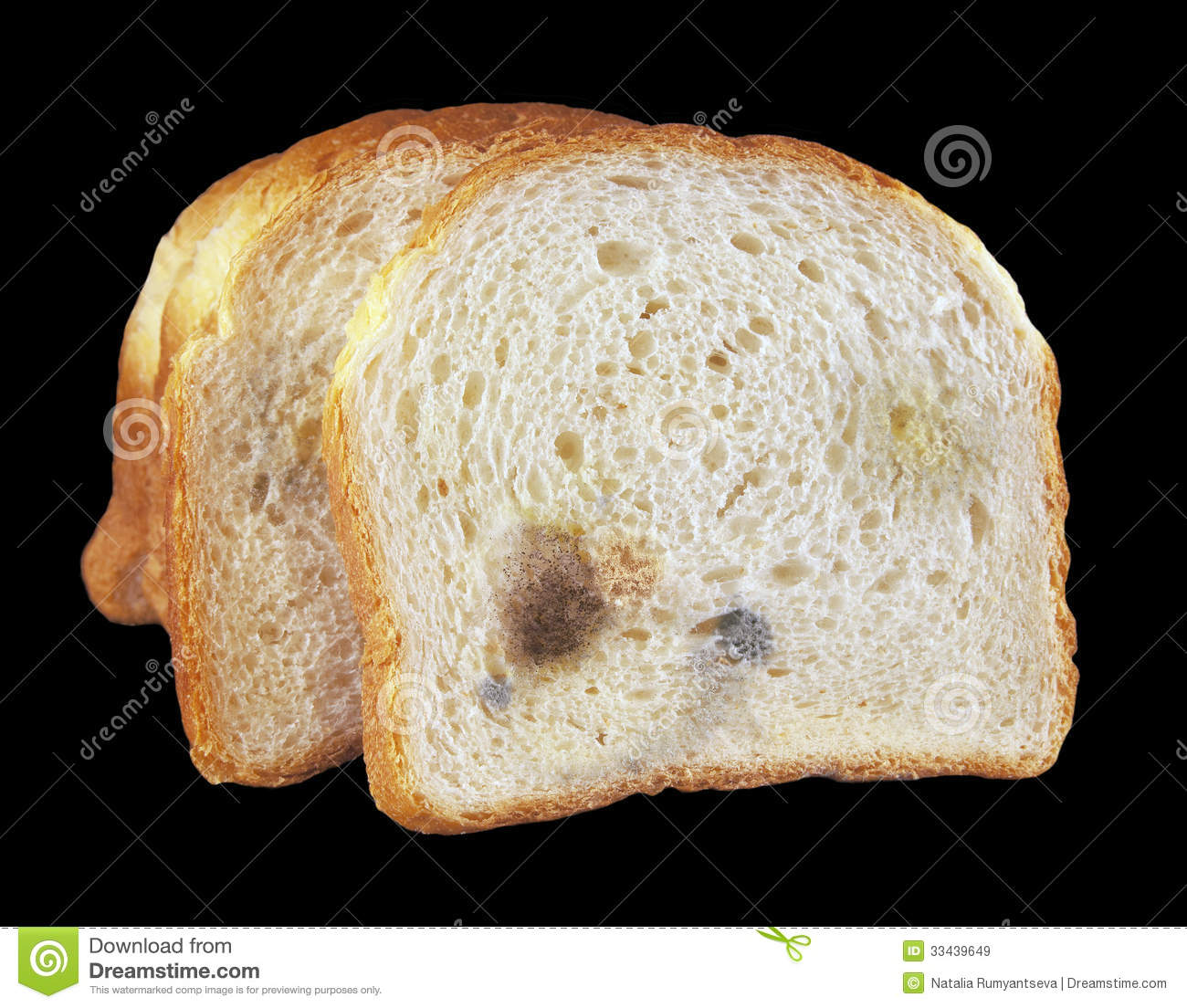 Moldy Bread Royalty Free Stock Images.