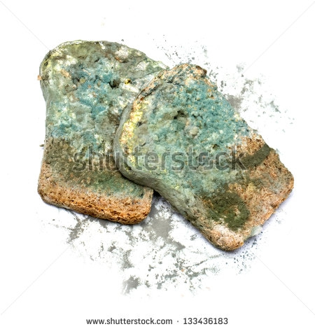 Moldy Bread Clipart#2136734.