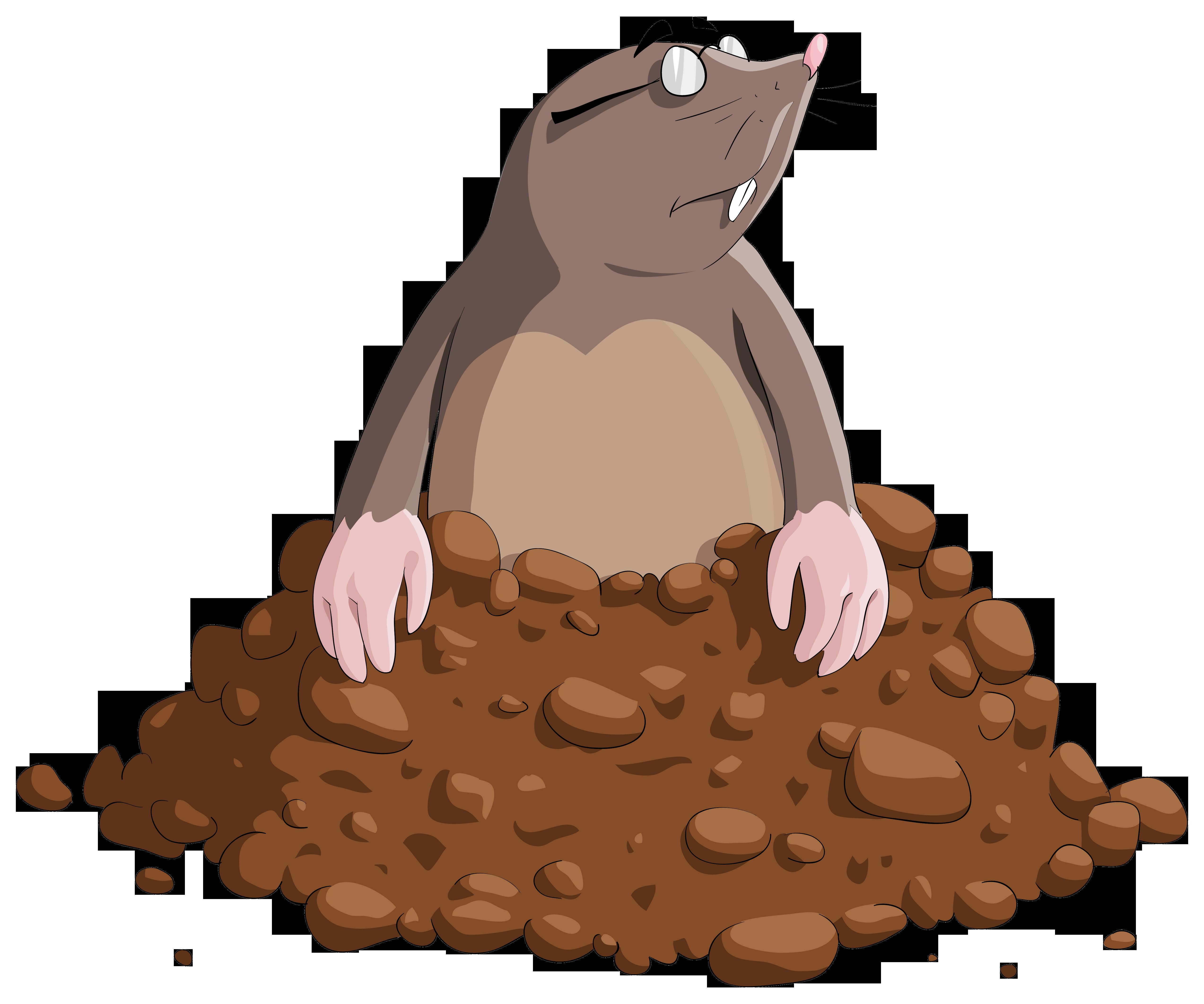 Mole Cartoon PNG Clipart Image.