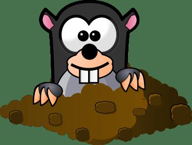 Mole Clipart transparent PNG.