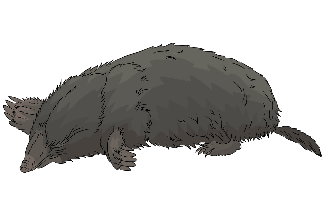 Mole clipart. Free download..