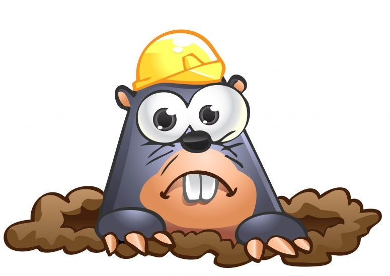 Mole Clipart at GetDrawings.com.