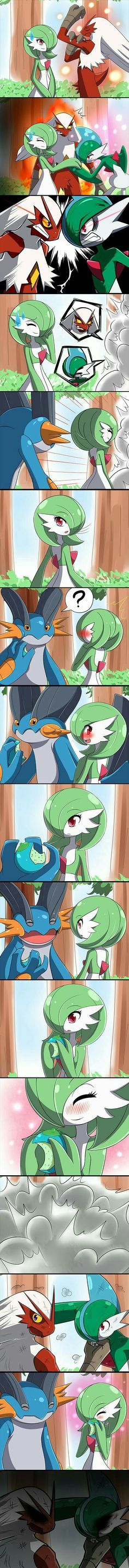 Gardevoir, Gallade, Blaziken, Swampert, funny, comic, fighting.