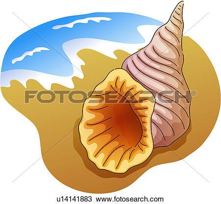 Mollusc Clipart Illustrations. 388 mollusc clip art vector EPS.