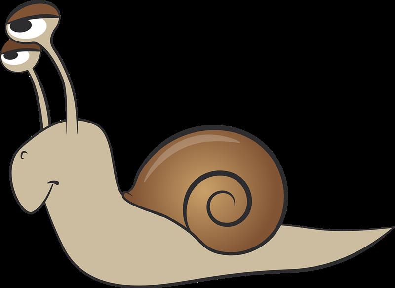 Free to Use & Public Domain Molluscs Clip Art.