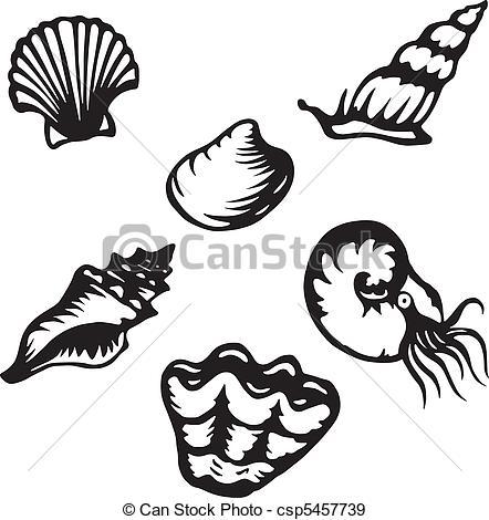 Mollusk Illustrations and Clipart. 4,726 Mollusk royalty free.