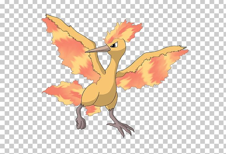 Pokémon X And Y Moltres Zapdos Entei PNG, Clipart, Art.
