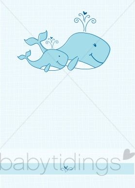 baby whale images.