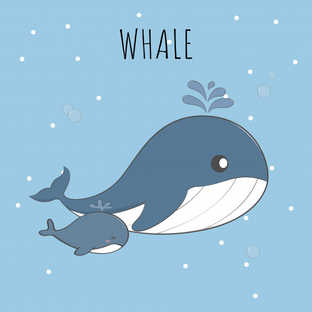 Cute baby whale and mom pastel cartoon Vector.