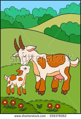 Baby Goat Stock Vectors, Images & Vector Art.