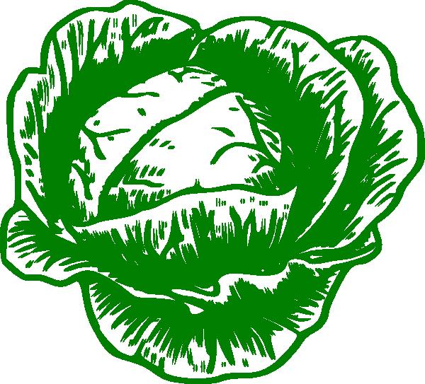 Cabbage Mon Petit Clip Art at Clker.com.