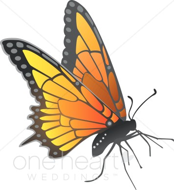 """Search Results for """"Monarch Butterflies"""" ( 9 found )."""