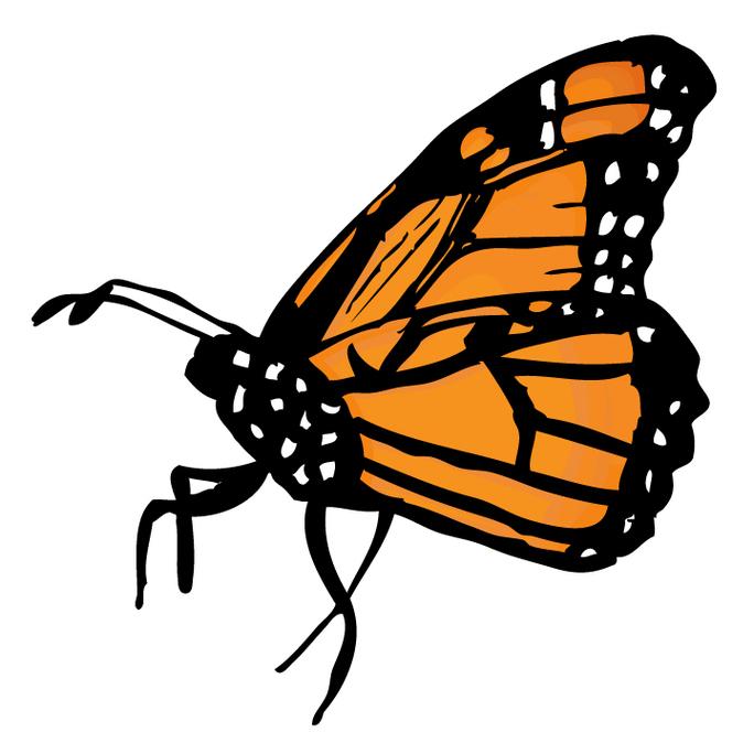 Monarch Butterfly Clip Art.