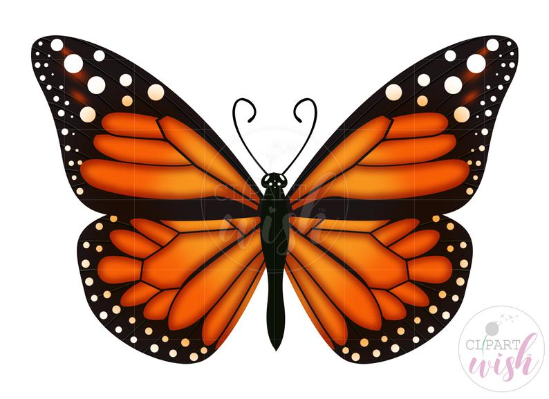 Butterfly PNG, Monarch Butterfly Clipart, Sublimation Designs Downloads,.