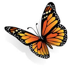 Butterfly clipart monarch.