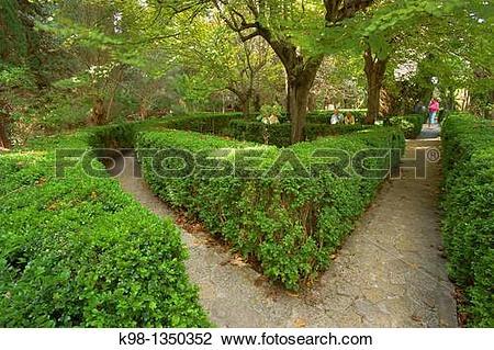 Stock Photo of Valldemossa Carthusian monastery gardens of the.