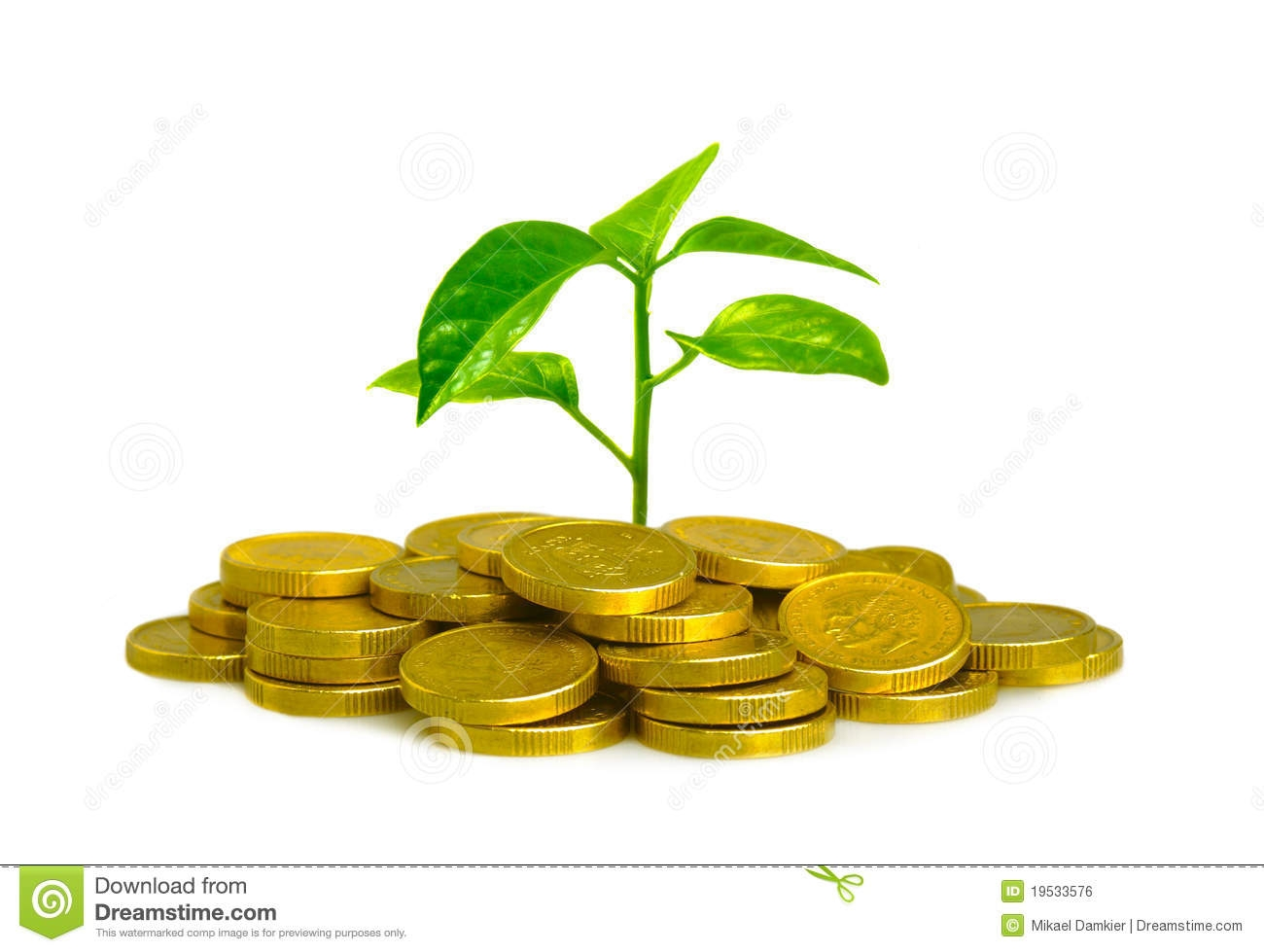 Money Plant Clipart.