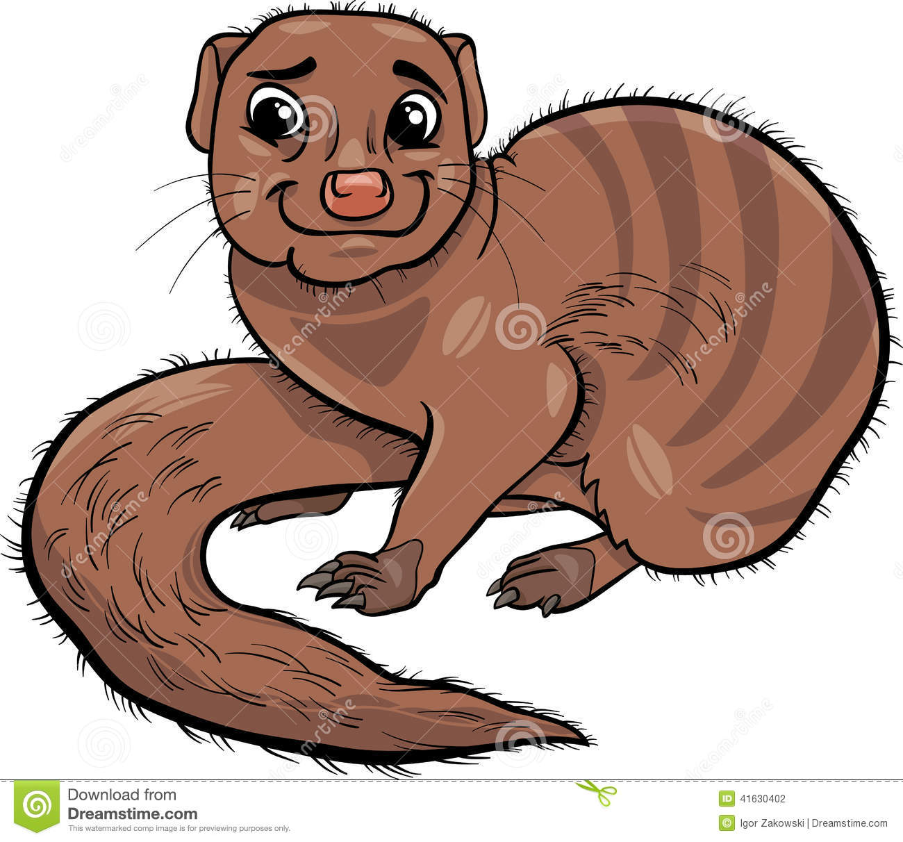 Mongoose Stock Illustrations.