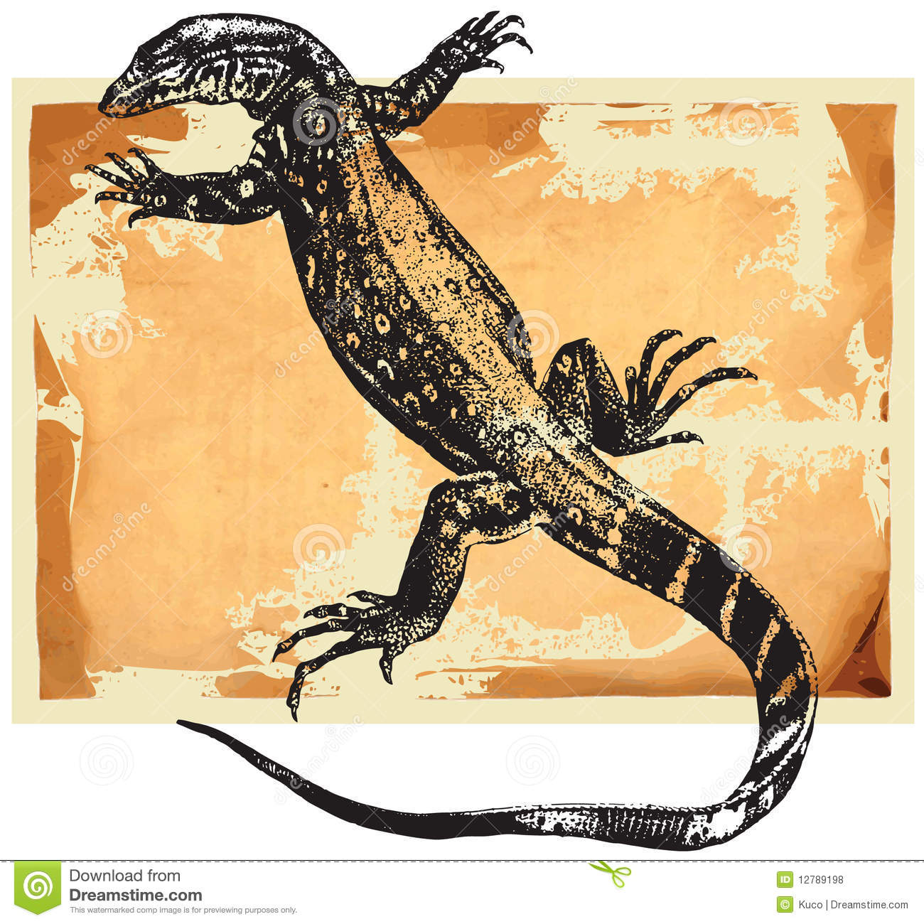 Monitor Lizard Stock Illustrations.