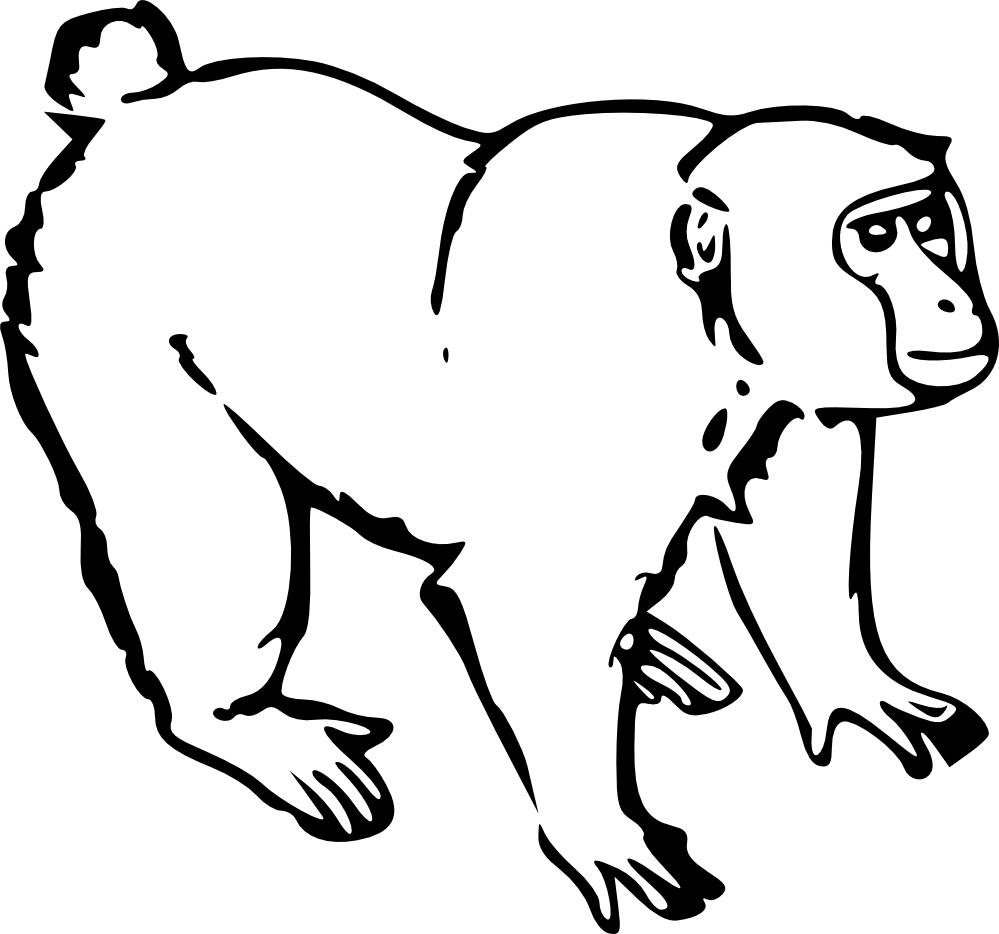Hanging Monkey Clipart Black And White.