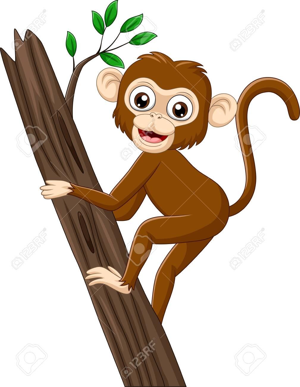 Vector illustration of Cartoon baby monkey climbing tree branch.