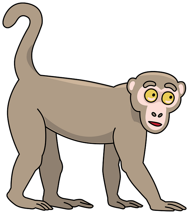 Monkey clipart. Free download..
