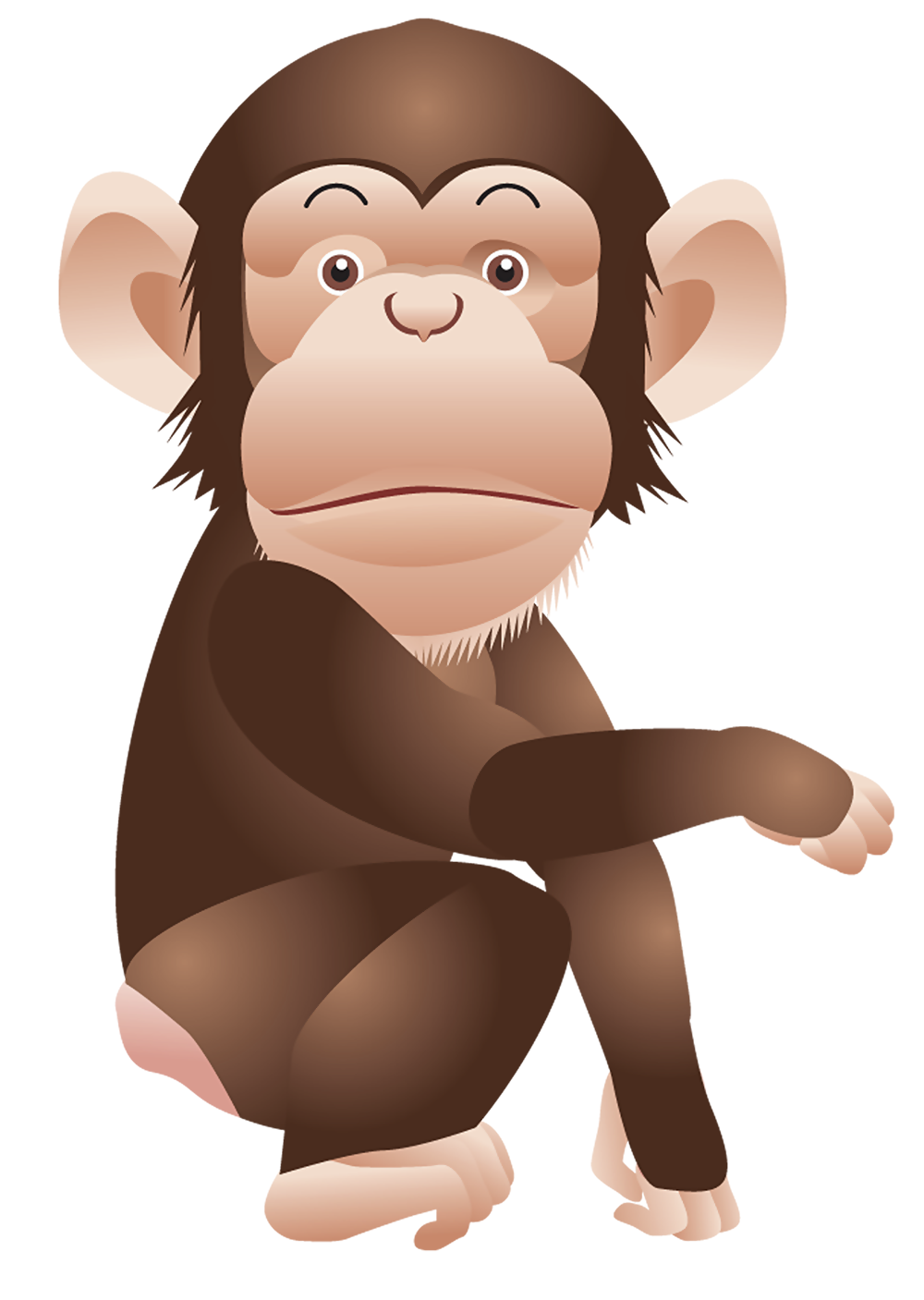 Monkey PNG Clipart Picture.