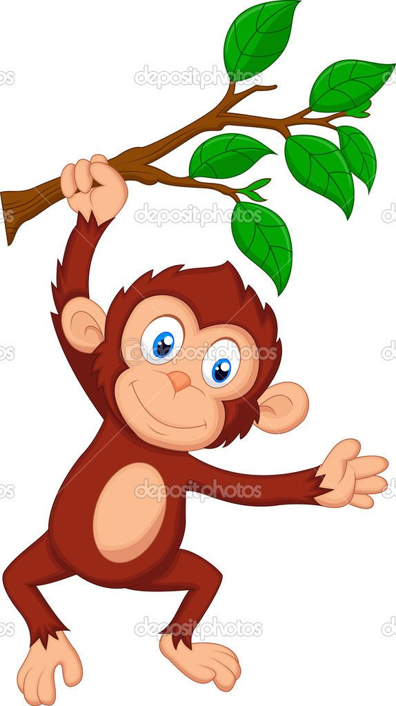 moneky hanging by tail from tree branch.