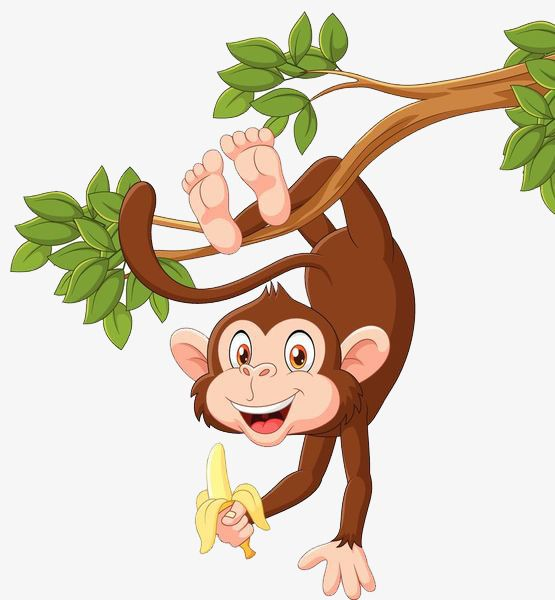 Hang Upside Down On The Tree, Monkey, Animal, With Tail PNG.