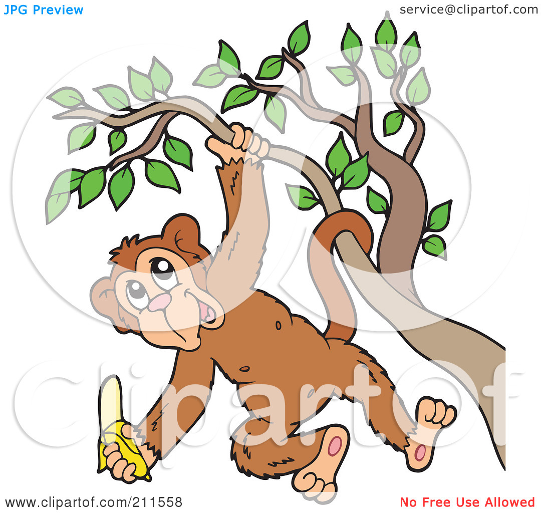 Monkey Hanging From A Tree Clipart.