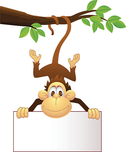 Monkey With Blank Sign In The Jungle Clip Art, Vector Images.