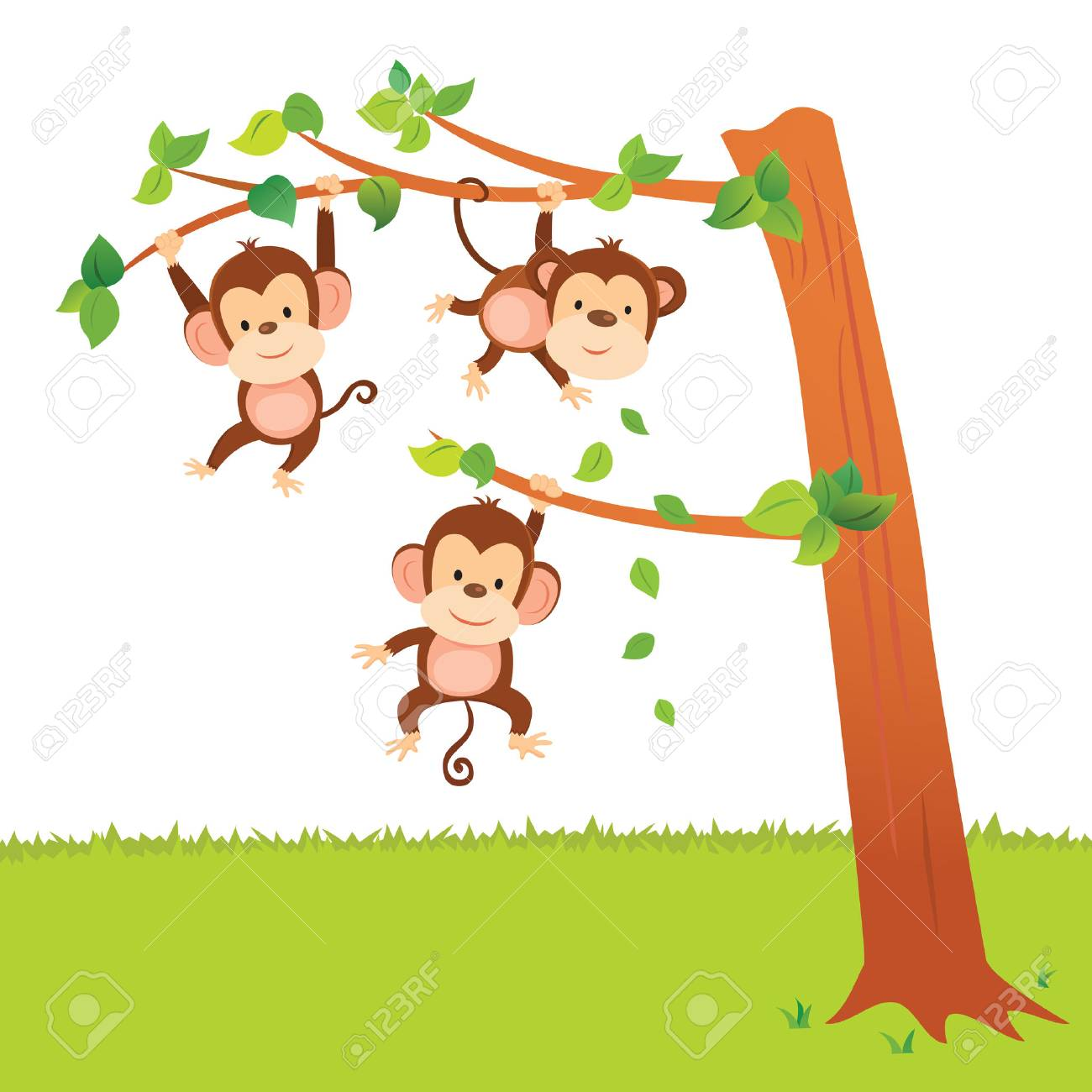 Monkeys swinging in a tree have fun activities..