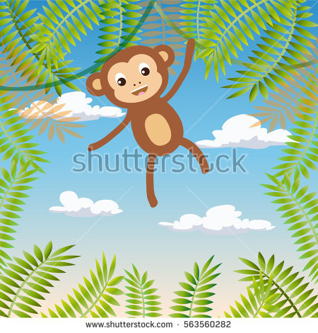 Monkey Coconut Tree Stock Images, Royalty.