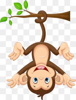 Monkey PNG.