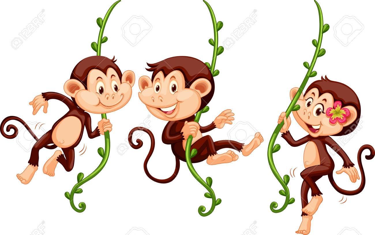 Three monkeys swinging on the vine illustration.