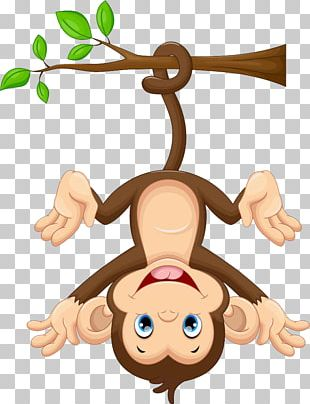 Monkey PNG Images, Monkey Clipart Free Download.