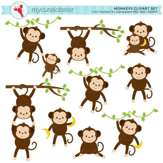 Monkeys Clipart Set.