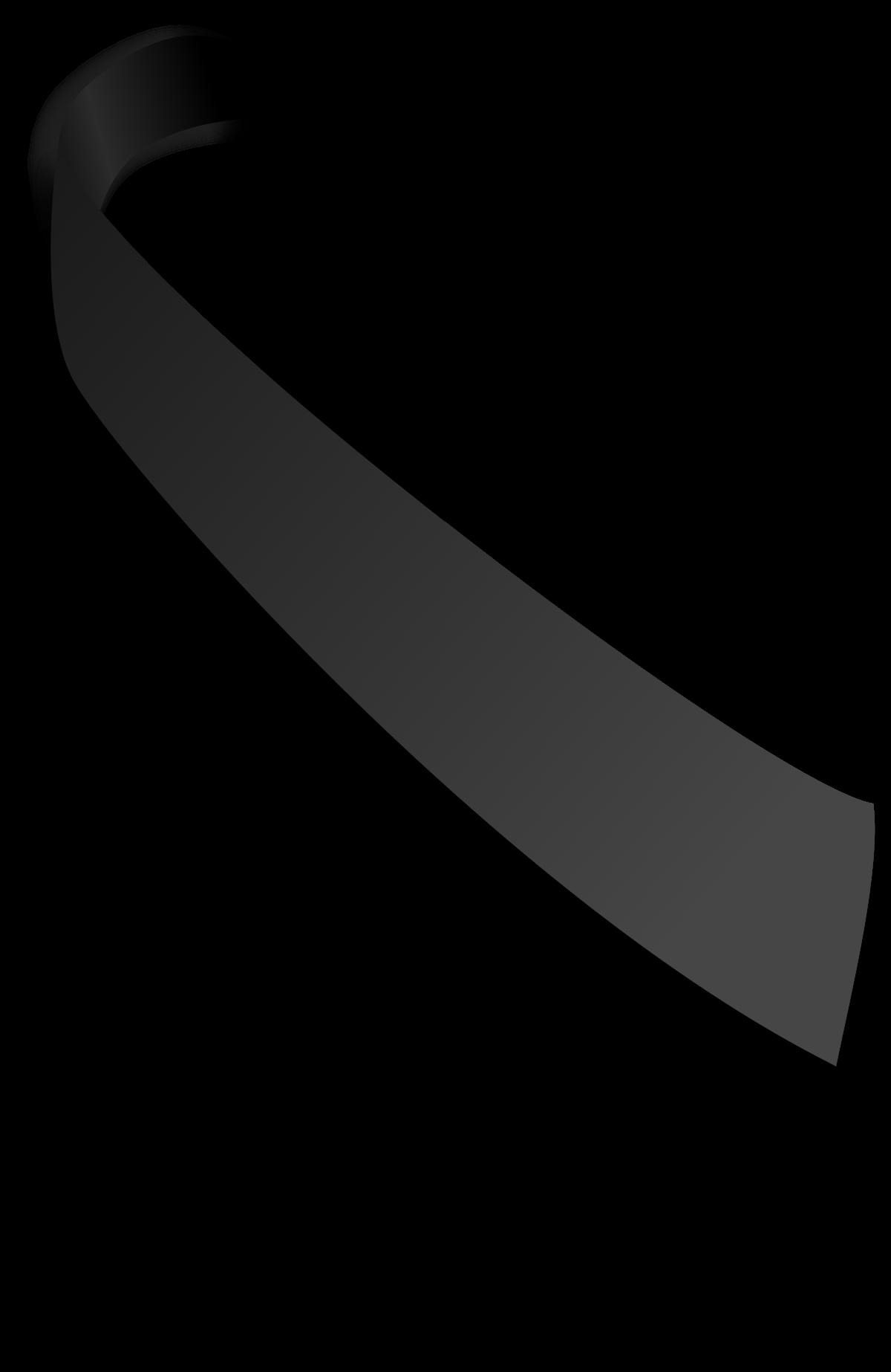 Lazo negro.