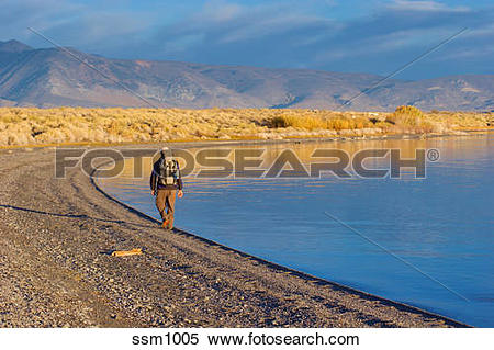 Stock Image of Man hiking along shore of Mono Lake, CA at sunrise.