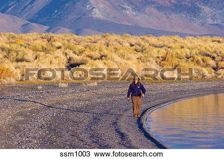 Stock Photo of Man hiking along shore of Mono Lake, CA at sunrise.
