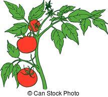 Monoculture Vector Clipart EPS Images. 18 Monoculture clip art.