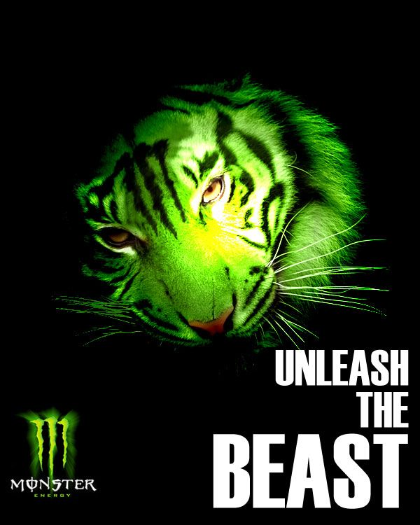 1000+ ideas about Monster Energy on Pinterest.